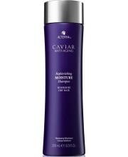 Шампунь зволожуючий з екстрактом Чорної Ікри без сульфатів Alterna Caviar Anti-Aging Replenishing Moisture Shampoo