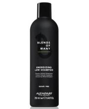 Шампунь для волос энергетический Alfaparf Blends of Many