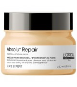 Маска для восстановления волос LOreal Absolut Repair Gold Qiunoa