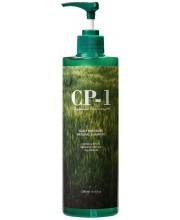 Натуральный шампунь для ежедневного применения CP-1 Daily Moisture Natural Shampoo